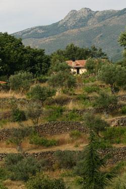 Viajes para dos en extremadura hervas for Piscinas naturales hervas